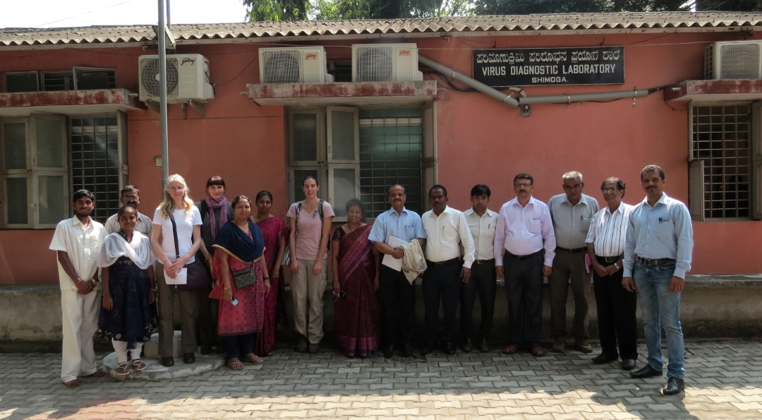 Project team visit of virus diagnostics lab in Shimoga - photo by SarahBurthe