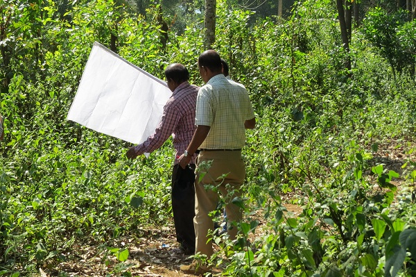 Health workers and project team members flagging forest vegetation for ticks - Photo by Sarah Burthe